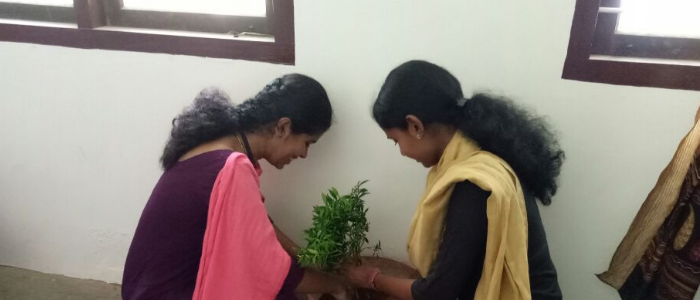 Environment day 2018-19